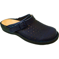Calzatura professionale con fori blu Adjutor